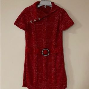 Ted Sweater Dress